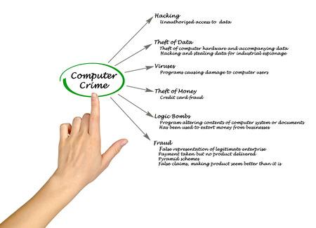 legitimate: Computer Crime