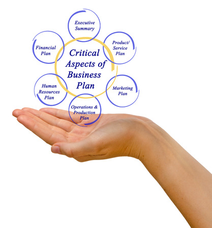 aspects: Critical Aspects of Business Plan