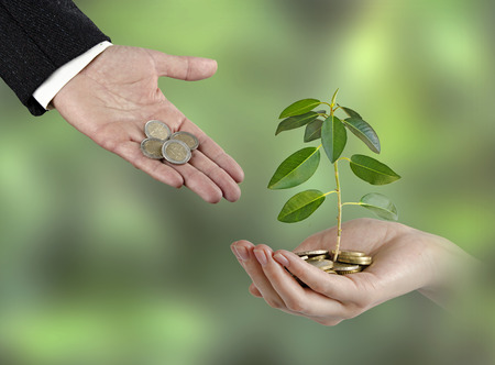 ecosavy: Investing to green business