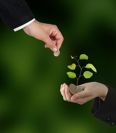 plantando arbol: La inversi?n de las empresas verdes Foto de archivo