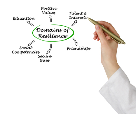 resilience: Domains of resilience