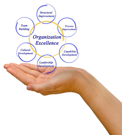 building structure: Diagram of Organization Excellence
