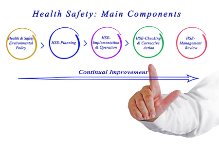 componentes: Seguridad y Salud: Componentes Principales