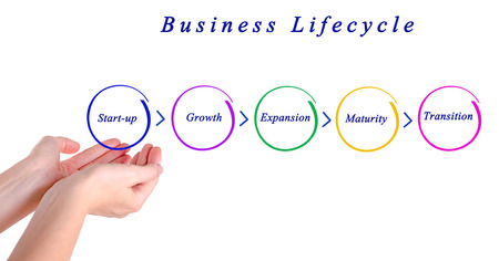 lifecycle: Business lifecycle Stock Photo
