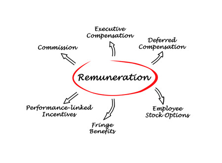 employee stock option: Diagram of Remuneration