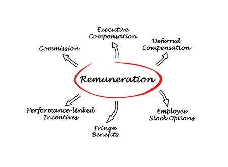 remuneraci�n: Diagrama de la Remuneraci�n