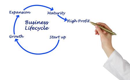lifecycle: ciclo de vida empresarial