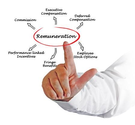 remuneration: Diagram of Remuneration