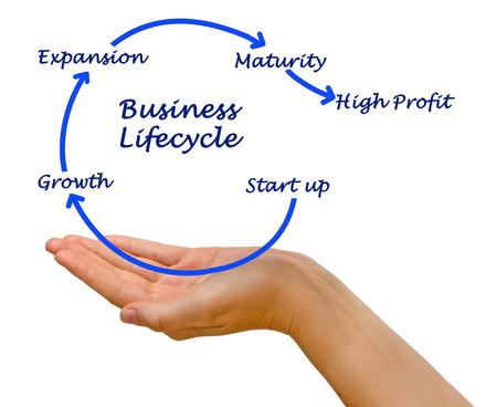 ciclo de vida: Diagrama del ciclo de vida de negocios