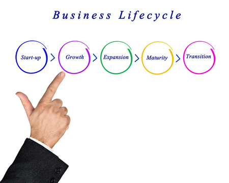 business life: Business lifecycle Stock Photo