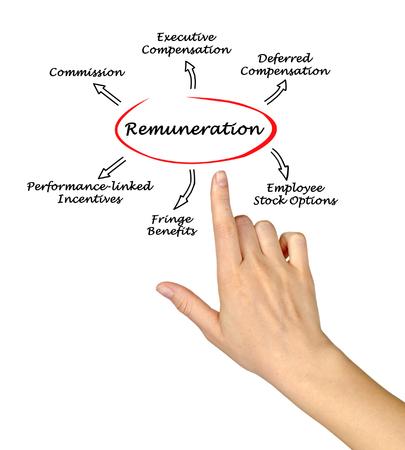 fringe benefit: Diagram of Remuneration