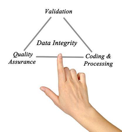 integridad: Diagrama de la integridad de los datos