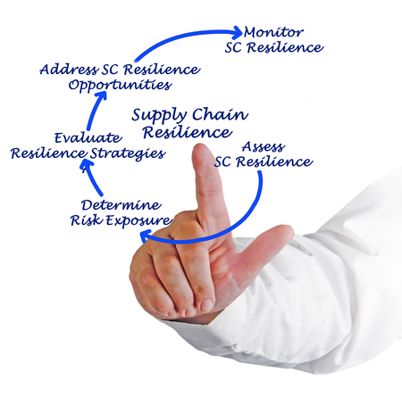resilience: Diagram of Supply Chain Resilience
