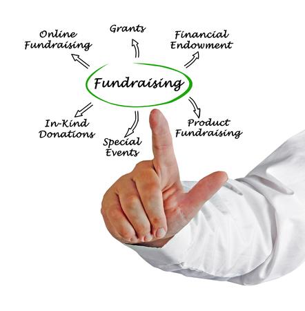 grants: Fundraising