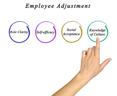 efficacy: Diagram of Employee Adjustment