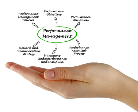 remuneraciones: Performance Management System