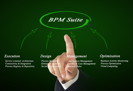 bpm: Diagram of BPM Suite