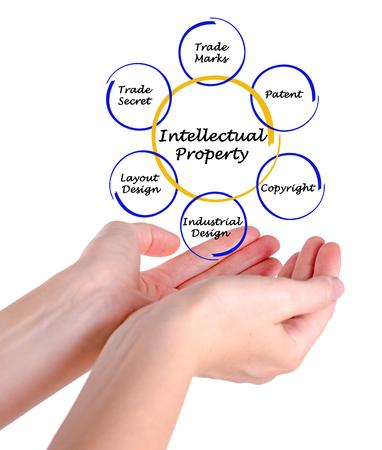 Diagrama de la Propiedad Intelectual Foto de archivo