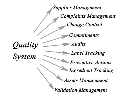 audits: Diagram of Quality System