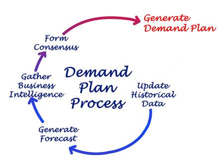 in demand: Diagram of Demand Plan Process