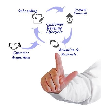 ciclo de vida: Diagrama del ciclo de vida del cliente Ingresos