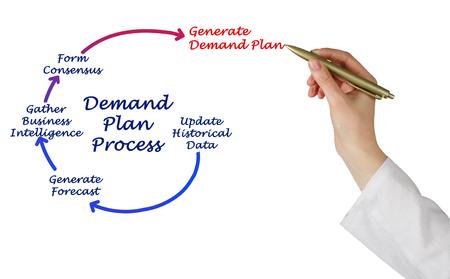 demand: Diagram of Demand Plan Process
