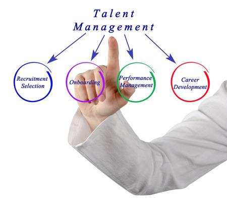 talent management: Diagram of Talent Management