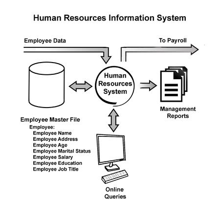 data management: Human Resources Information System