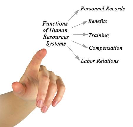 labor relations: Diagram of Human Resources Systems Foto de archivo