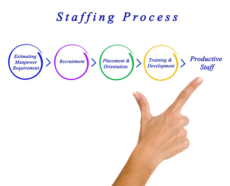 estimating: Diagram of staffing process