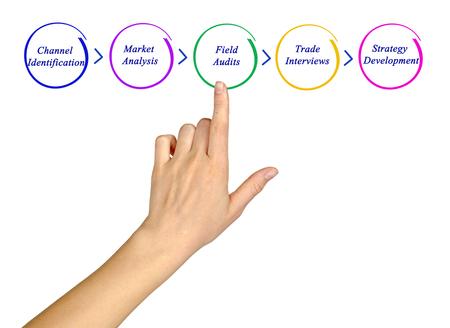 audits: Diagram of process