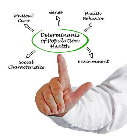 poblacion: Determinantes de la Salud de la Poblaci�n Foto de archivo