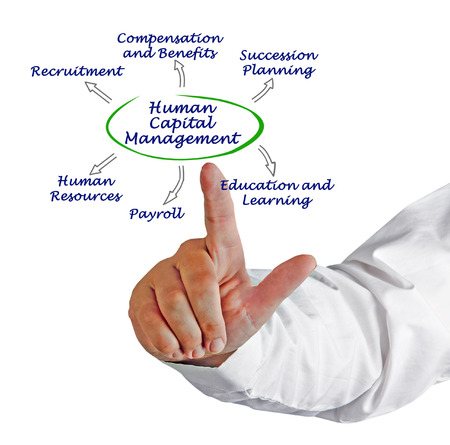 succession planning: Diagram of Human Capital Management
