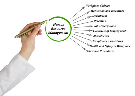 absenteeism: Diagram of Human Resource Management