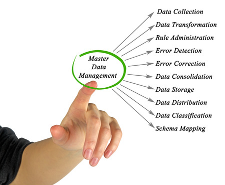 data management: diagram of Master Data Management