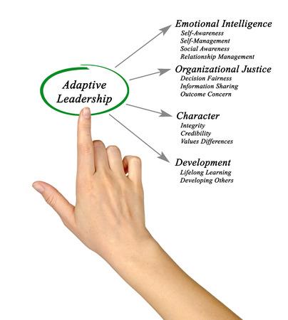 adaptive: Diagram of Adaptive Leadership Stock Photo