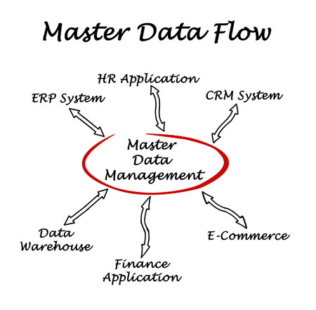 Diagram of Master Data Flow