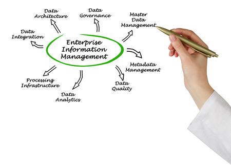 Schéma de l'Enterprise Information Management Banque d'images - 58468067