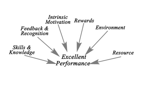 intrinsic: Diagram of Excellent Performance