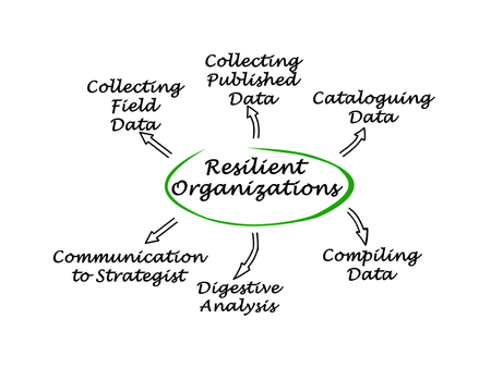 resilient: Diagram of Resilient Organizations Stock Photo