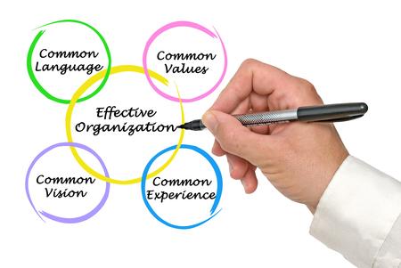 effective: Diagram of Effective Organizations