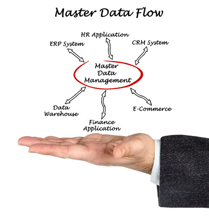 data management: Diagram of Master Data Flow