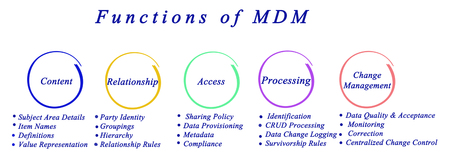 master: Functions of master data management