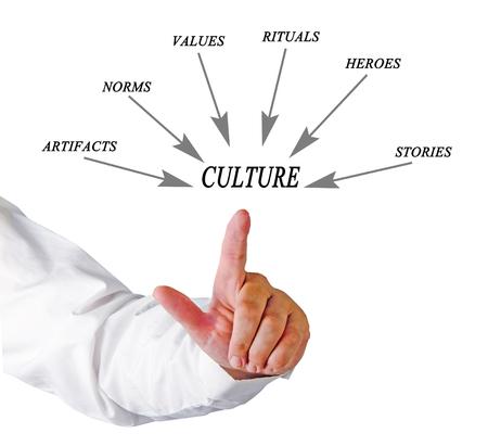 culture: Components of culture