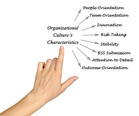 culture: Characteristics of Organizational Culture