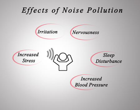 disturbance: Effects of Noise Pollution