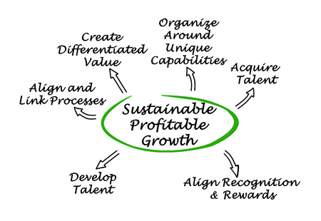 acquiring: Sustainable Profitable Growth
