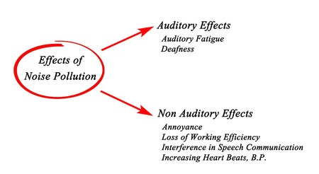 deafness: Effects of Noise Pollution