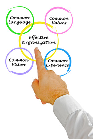common vision: Diagram of Effective Organizations
