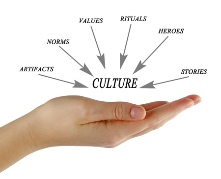 norms: Components of culture
